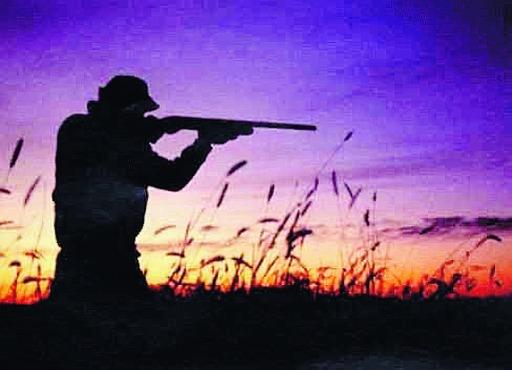 """Emergenza lupi, i cacciatori: """"Non spariamo a piacimento"""""""