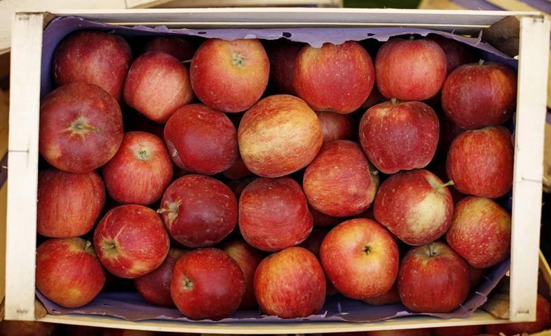 L'importanza della frutta nella propria dieta a #ricettainsalute
