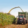 """Agricoltura, assunzioni a +12,6%. Coldiretti: """"Manca una giusta redditività"""""""
