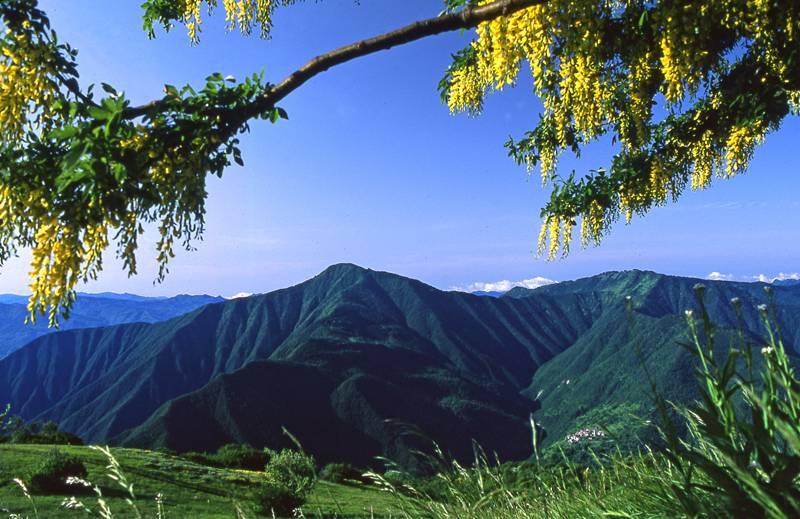 Alta Valtrebbia