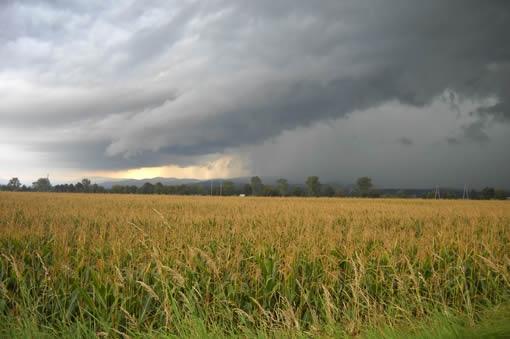 Maltempo, piogge e temporali. Addio caldo torrido, arriva il clima settembrino