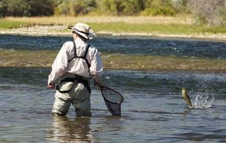 Stagione di pesca