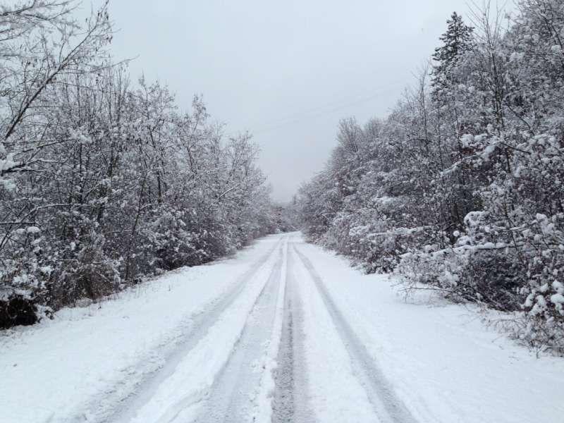 Neve in alta valnure (24)-800