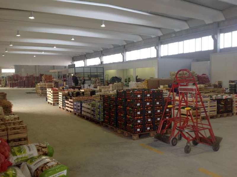Nuovo mercato ortofrutticolo (3)-800