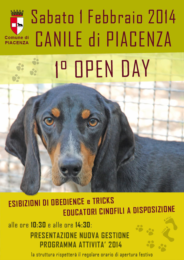 Open day canile