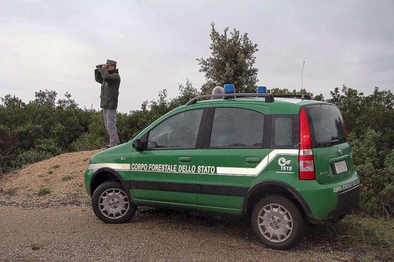 Corpo Forestale dello Stato (4)