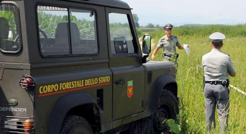Corpo Forestale dello Stato (9)