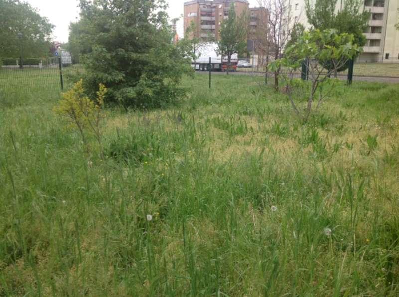 giardini di via Codagnello (21)-800