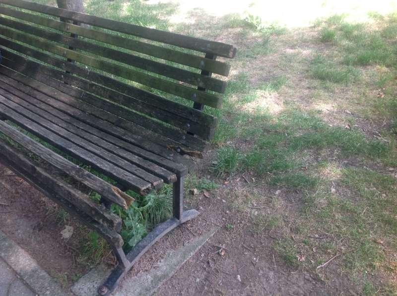 Panchine rotte ai giardini di via Arrigoni (1)