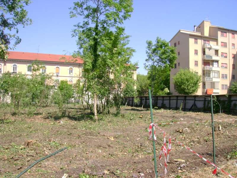 taglio degli alberi al parcheggio di viale Malta (1)