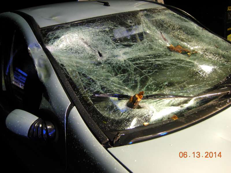 Auto travolta dall albero a Niviano (3)-800