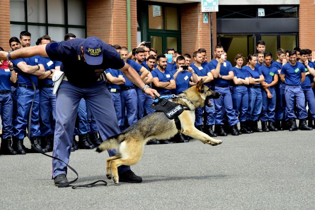 Scuola di Polizia - dimostrazione cane antisommossa