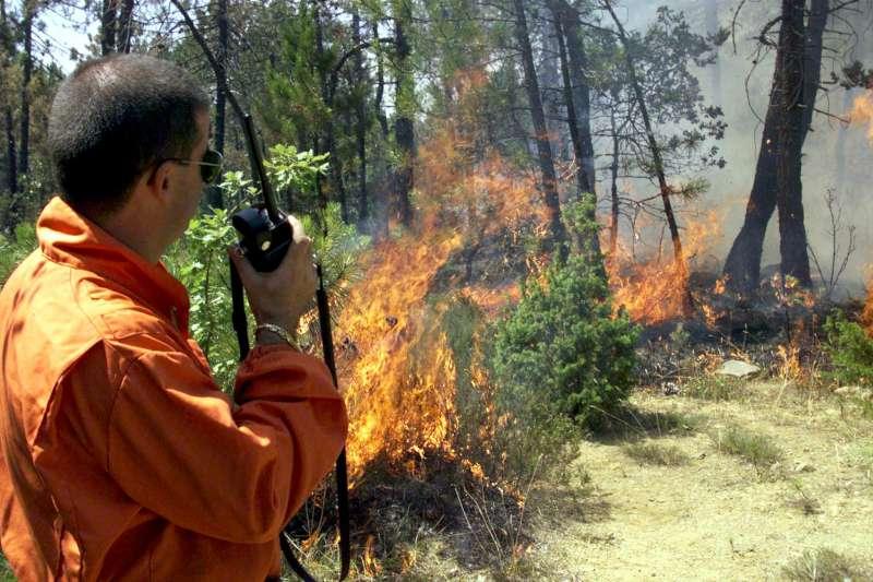 Incendi boschivi (1)