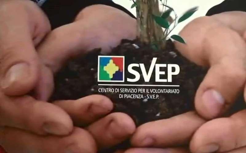 Volontariato, Svep (1)-800