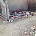 Cumuli di rifiuti e topi, il degrado corre sotto il cavalcavia