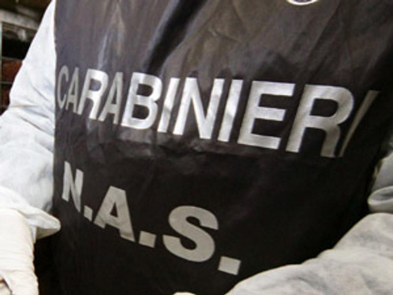 Mezzo milione di euro di pastiglie sequestrato dai Nas nel Piacentino