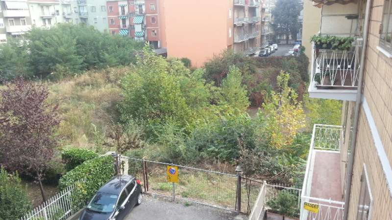 Topi, zanzare e bisce nella zona di viale Dante: l'appello dei residenti
