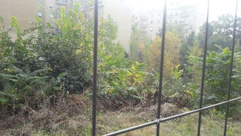 Campo pieno di topi e insetti nella zona di via Dante: l'ordinanza del Comune