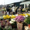Due novembre, corsa all'acquisto di fiori per ricordare i propri cari