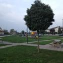 Vandali assaltano tre parchi cittadini: danni per oltre 6mila euro