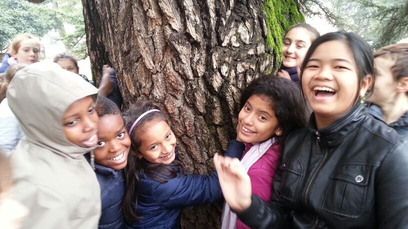 bambini abbracciano gli alberi