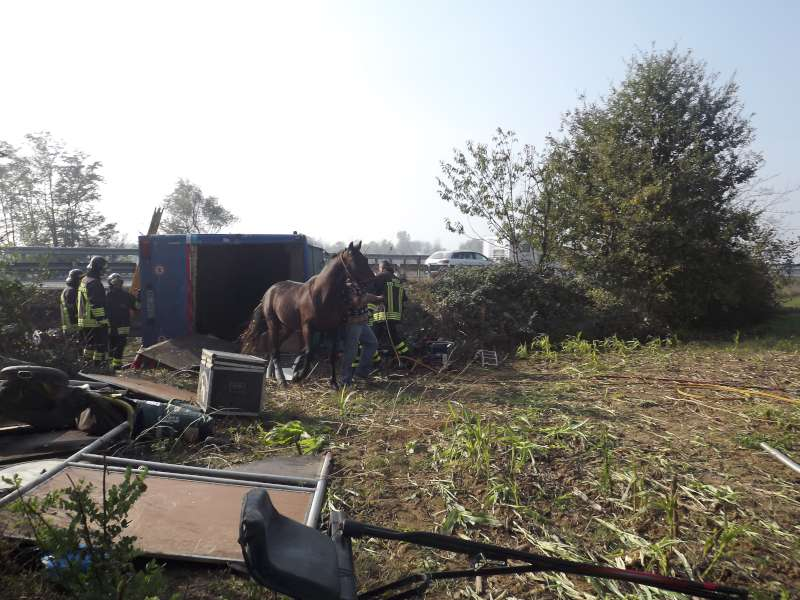 incidente A1 camion cavalli (4)-800