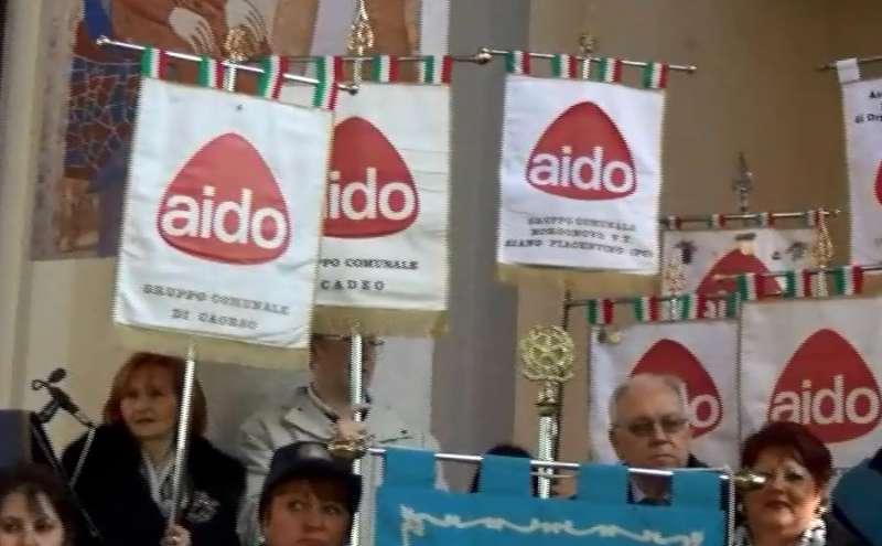Aido  (1)-800