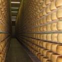 Ritrovati a Pesaro 100mila euro di formaggi rubati a Monticelli