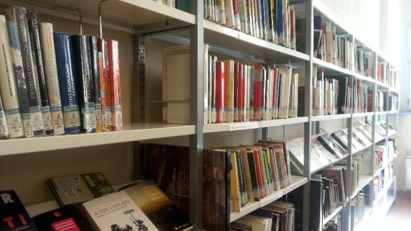 Libreria biblioteca (2)-800