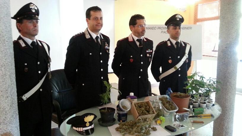marijuana e hashish (4)