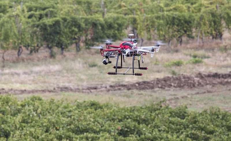 Prima sperimentazione di droni in agricoltura sui vigneti a Vicobarone
