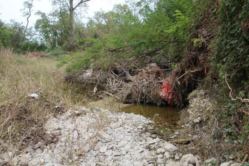 Torrenti in secca e alvei da pulire, pieni di tronchi (5)-800