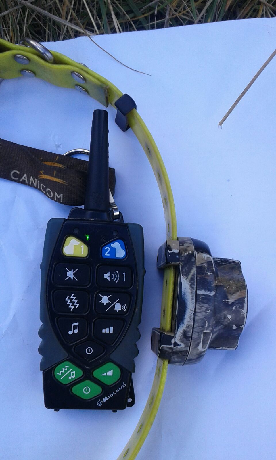 Schema Elettrico Beeper Per Cani : A caccia con richiami vivi e collari elettrici per i cani