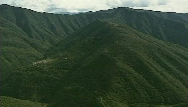 Valorizzare i boschi: 7 progetti da Piacenza finanziati con 700mila euro