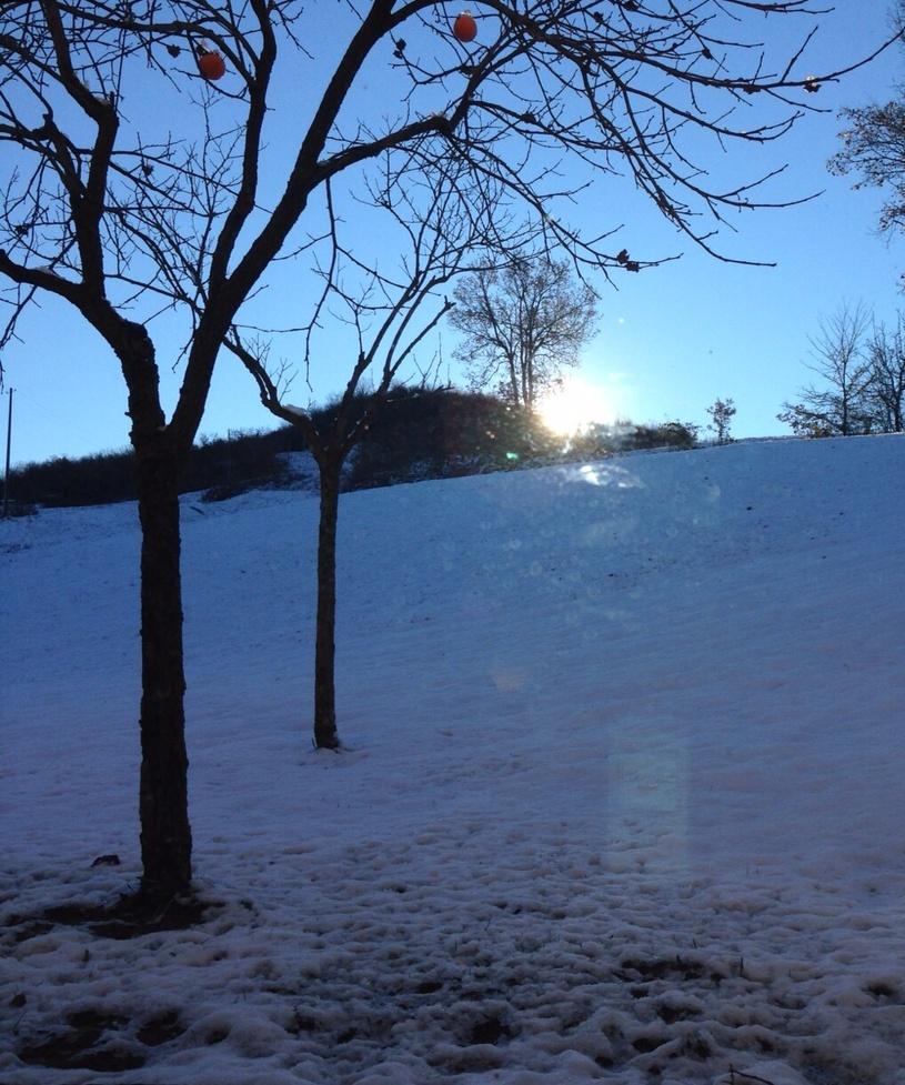nevicata2015