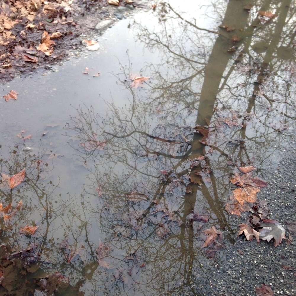 pioggia, pozzanghere e fango (4)-1000