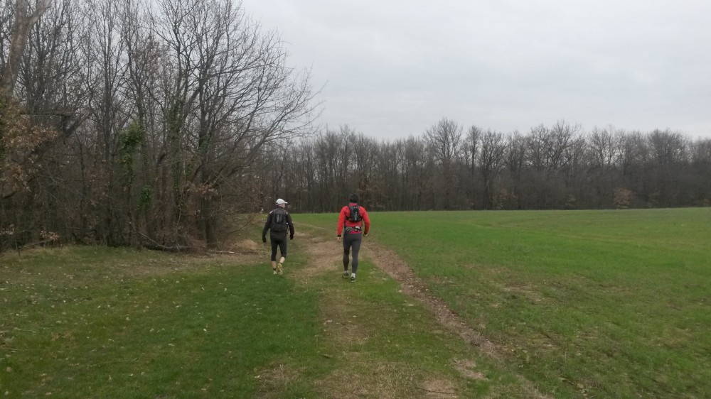 percorso Trailballando Terreno compatto-1000
