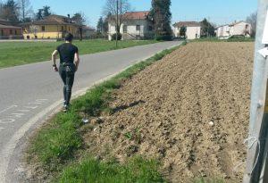 Correre in Libertà: tutti in marcia per dare una mano all'Avis di Cadeo