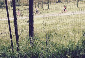 """Varchi nella recinzione del parco della Galleana. """"Così da un anno"""""""