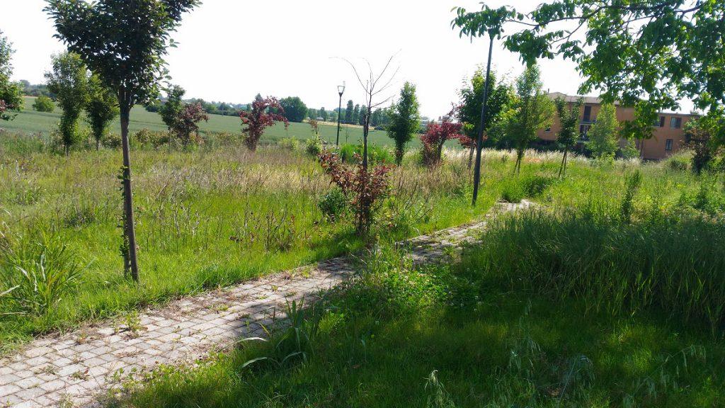 Giardino strada dell'aguzzafame
