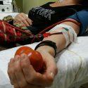 Donazioni di sangue: boom di accessi al Centro trasfusionale di Piacenza