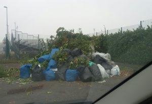 Il contenitore del verde è invisibile: sommerso dai rifiuti