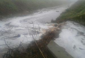 """Sversamento liquami in un canale della Bassa. Biasini: """"Verifiche livelli delle vasche"""""""