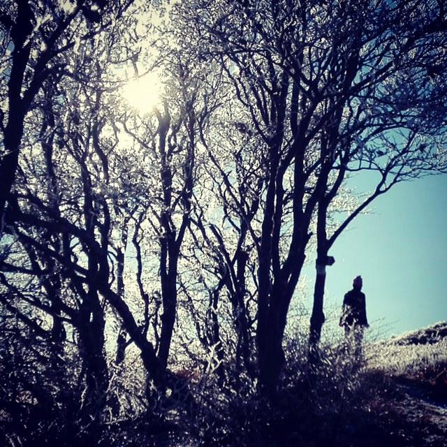 Tutto pronto per il Wolf Winter Weekend. Domani in edicola i consigli per la preparazione invernale