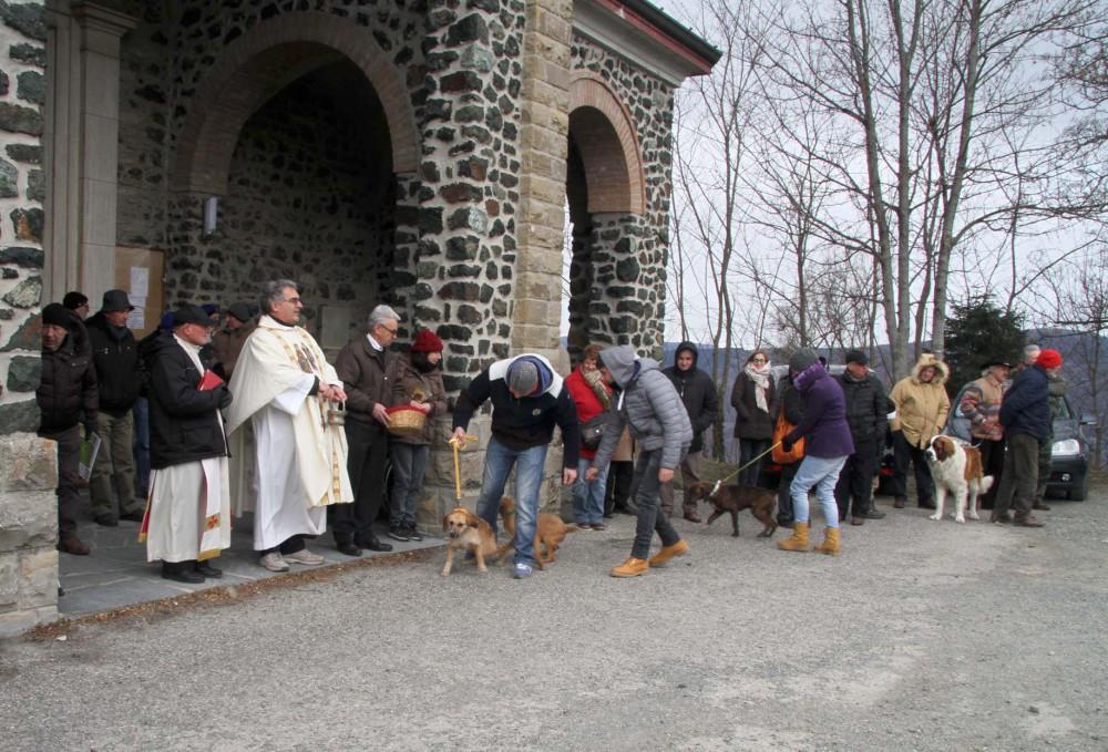 Sant'Antonio Abate, benedizione degli animali a Groppallo e in San Dalmazio