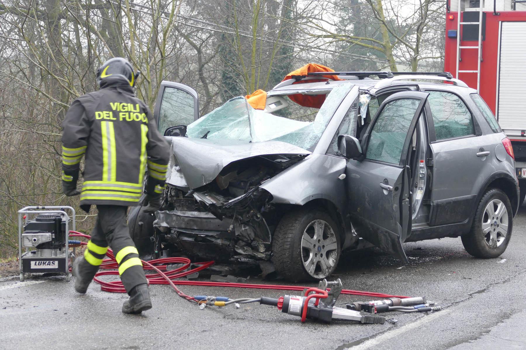 Auto travolge cinghiale ed esce di strada. Grave il conducente