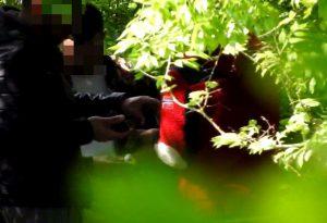 Spaccio al Parco della Galleana: sgominata banda di giovani. Sette arresti. GUARDA I VIDEO