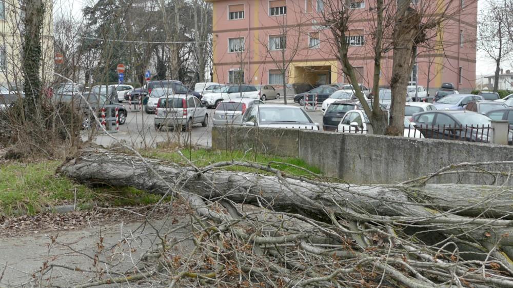 Difficoltà di parcheggio all'ex ospedale. Allo studio un ampliamento