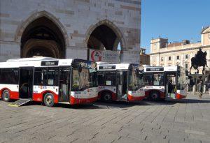 Autobus gratis per gli over 65 con Isee inferiore ai 15mila euro