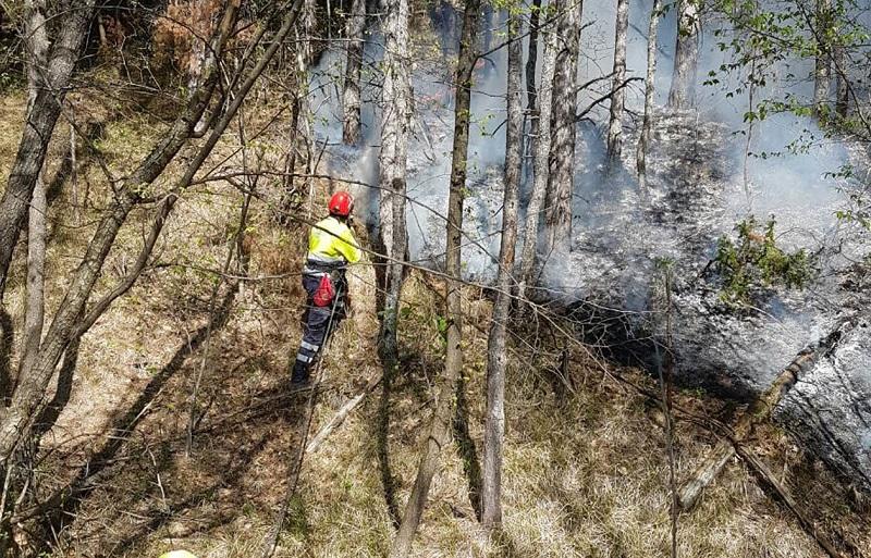 Incendi e danni del maltempo, due milioni di euro per le aree boschive